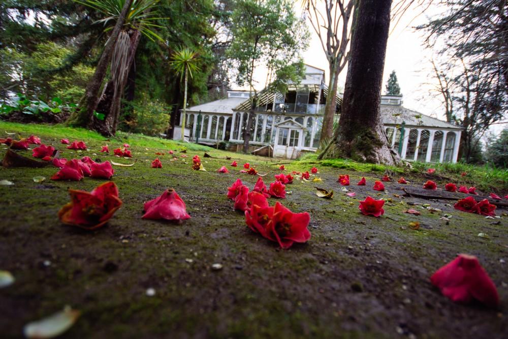 Conservatorio de Plantas del Parque Isidora Cousiño, Lota © Armando Torrealba para Plataforma Urbana