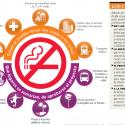 proyecto de ley lugares para no fumar