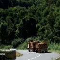 propuesta ruta araucania