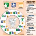 infografia participacion comunal