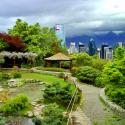 jardin japones parquemet
