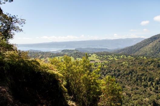 Parque Nacional Puyehue. Foto por © Plataforma Urbana.