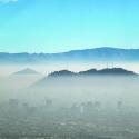 consulta smog
