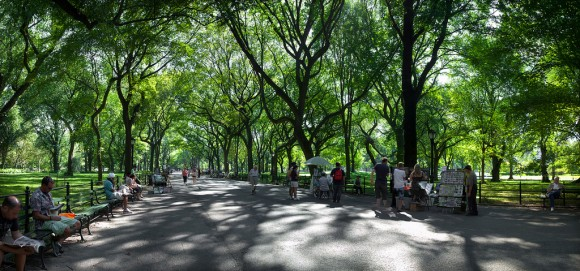 Central Park, Nueva York. Imagen de referencia. Foto por Wandering the World, vía Flickr.