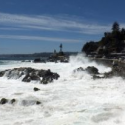 costanera vina del mar