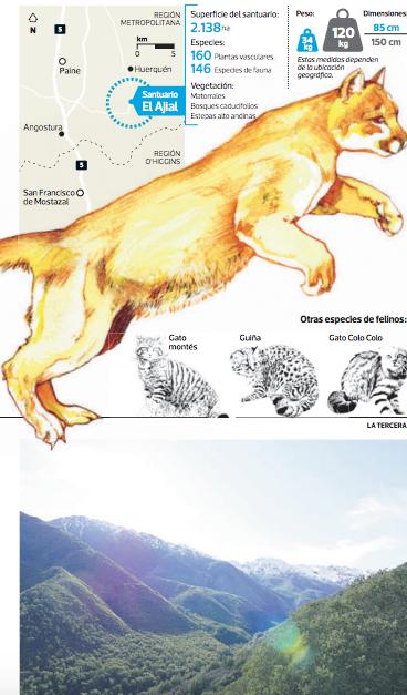 santuario de la naturaleza el ajial region metropolitana