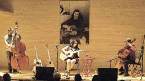 conciertos museo violeta parra