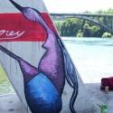 Intervención de Eney en Puente Nacimiento, Rio Villarica
