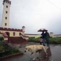 lluvias region coquimbo