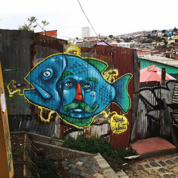 Cerro Polanco, Valparaíso. Flickr Usuario: Faya E.C.