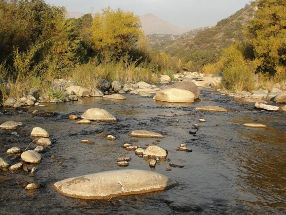 Parque Nacional Río Clarillo, Región Metropolitana. © Flickr Usuario: JavierPsilocybin. Licencia CC BY 2.0