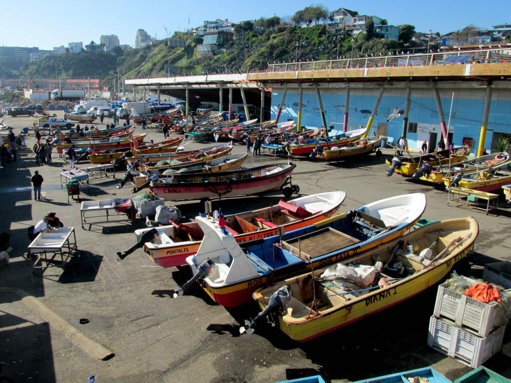 Caleta Portales, Valparaíso © Ángela Herrera