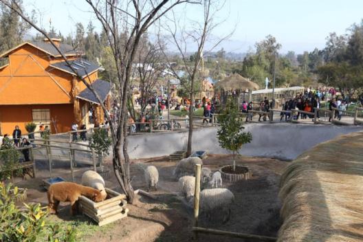 puente alto inaugura la primera granja educativa gratuita