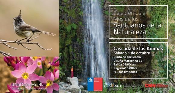 Afiche CMN Cascada de las Animas