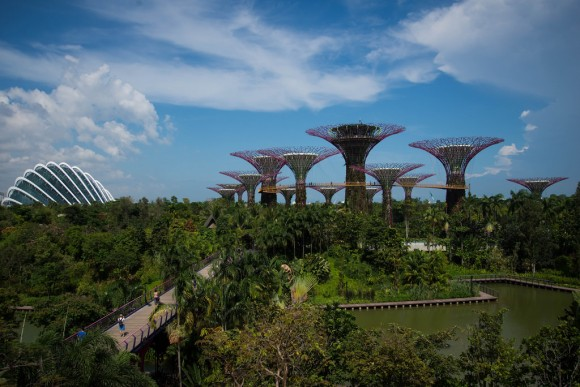 Gardens by the Bay, Singapur. © Flickr Usuario: Carla Cometto. Licencia CC BY 2.0