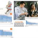 Uso cinturon de seguridad en automoviles
