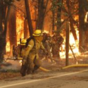Incendios enero 2017