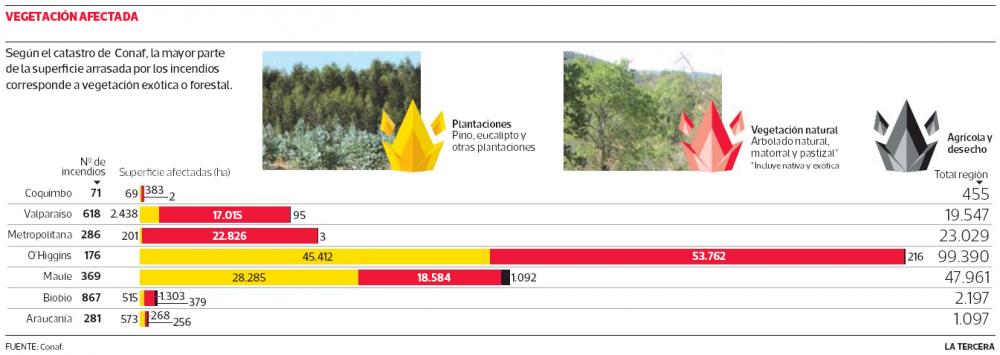 Vegetacion afectada incendios forestales Chile