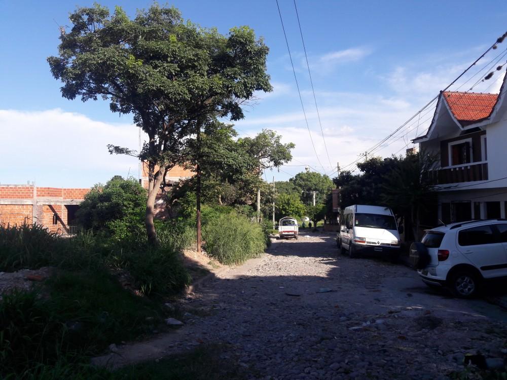 Vista de la Calle Santa Catalina, se observa una vegetación túpida. 2016.