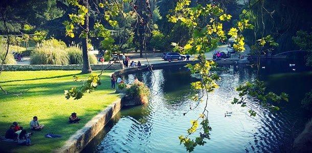 Parque Jardin Botaico Vina del Mar