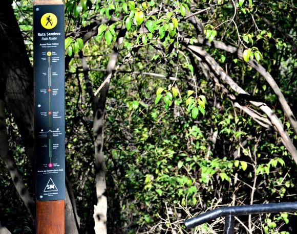 Sendero amarillo para peatones. © Parquemet