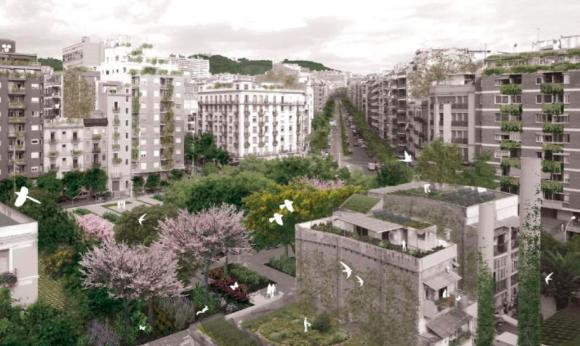 Fuente: Informe Plan del Verde y de la Biodiversidad de Barcelona 2020.