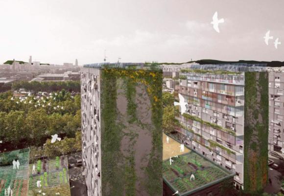 """Fuente: Informe """"Plan del Verde y de la Biodiversidad de Barcelona 2020""""."""