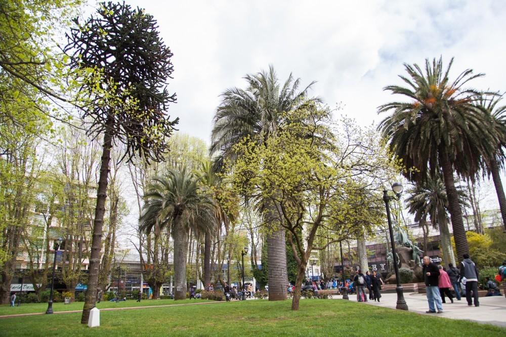 Temuco Imagen Plataforma Urbana
